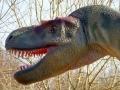 Albertosaurus-WinfriedHoor-300dpi.jpg