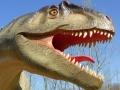 Allosaurus-ElkeWagner.jpg