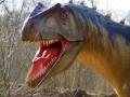 Allosaurus-WinfriedHoor-300dpi.jpg