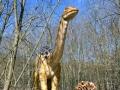 Apatosaurus-ElkeWagner.jpg