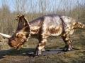Centrosaurus-WinfriedHoor-300dpi.jpg
