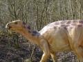 Iguanodon-ElkeWagner.jpg