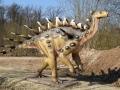 Kentrosaurus-WinfriedHoor-300dpi.jpg