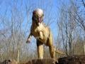 Pachycephalosaurus-WinfriedHoor-300dpi.jpg