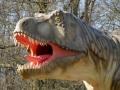 T-Rex-Porträt-WinfriedHoor-300dpi.jpg