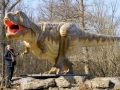 T-Rex-WinfriedHoor-300dpi.jpg
