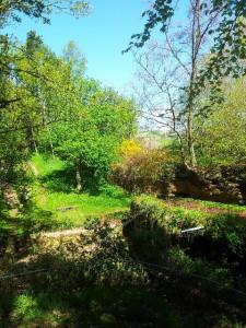 Felsenweiher in Erzen
