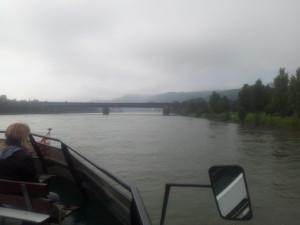 Nebelverhangener Rhein