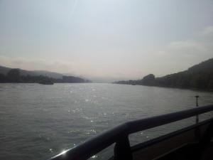Golden glänzt der Rhein in der Morgensonne