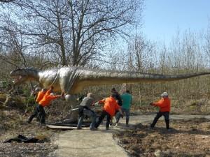 Der Allosaurus bei seinem Spaziergang durch den Dinosaurierpark Teufelsschlucht. Foto: Elke Wagner