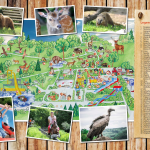 Parkplan Wild- und Freizeitpark Klotten Grafik