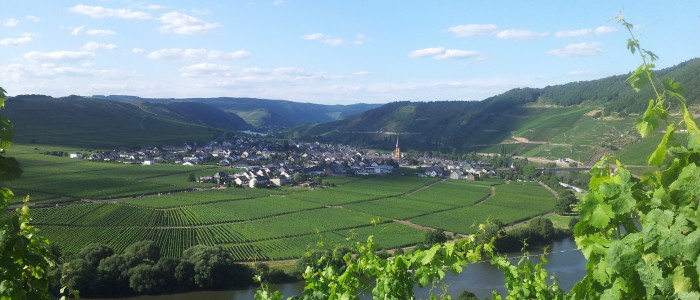 24 Stunden Bloggerwandern auf dem Moselsteig - Blick auf Bernkastel-Kues