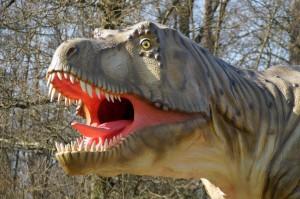 Scharfe Zähne hatte der Tyrannosaurusrex ja. Foto: Junger T-Rex im Dinosauerierpark Teufelsschlucht. Foto: Winfried Hoor