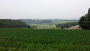 Das Winkeler Maar liegt direkt neben dem Pulvermaar und ist ca. 40.000 Jahre alt. Heute wird es landwirtschaftlich genutzt.